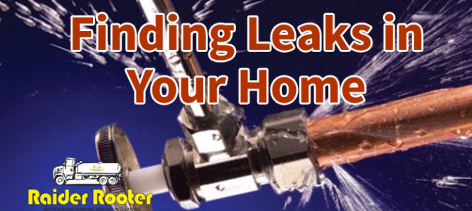 Find Costly Leaks in Your Home